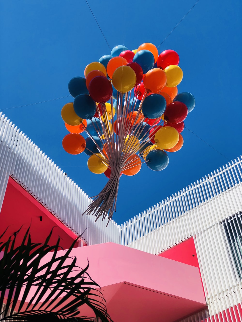 red yellow and blue balloons