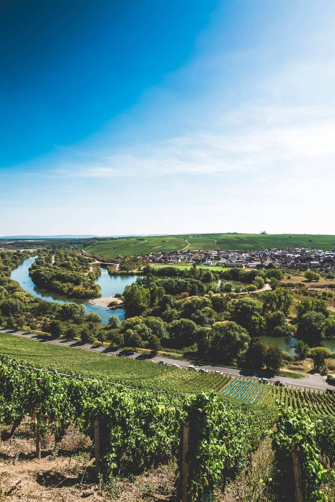 "Lower Franconia, also called ""Wein-Franken"", River: Main"