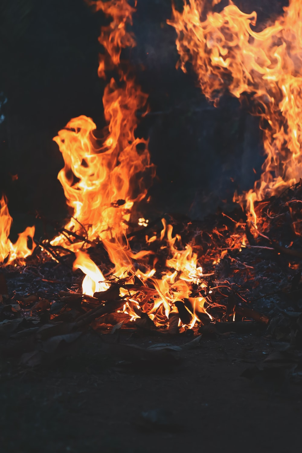 fire on ground during night time