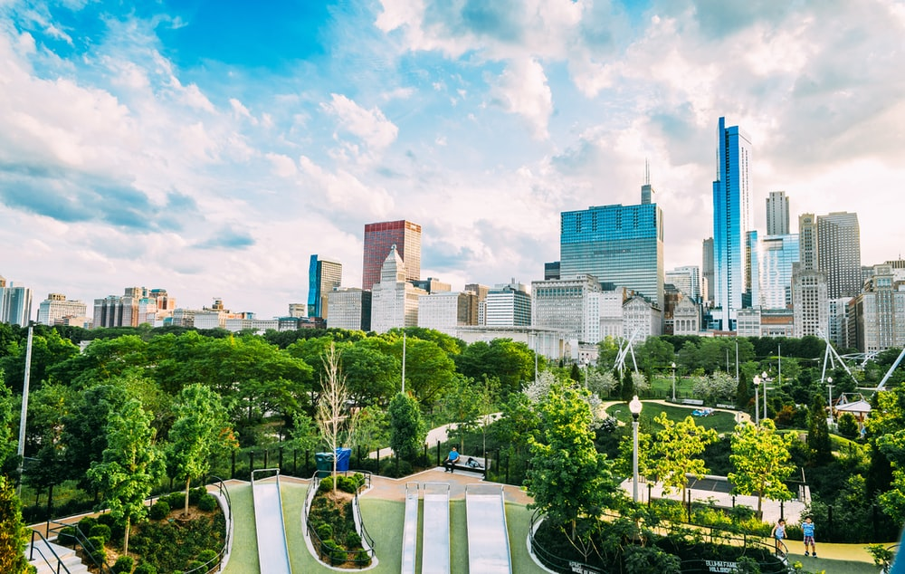 green trees near city buildings under blue sky during daytime