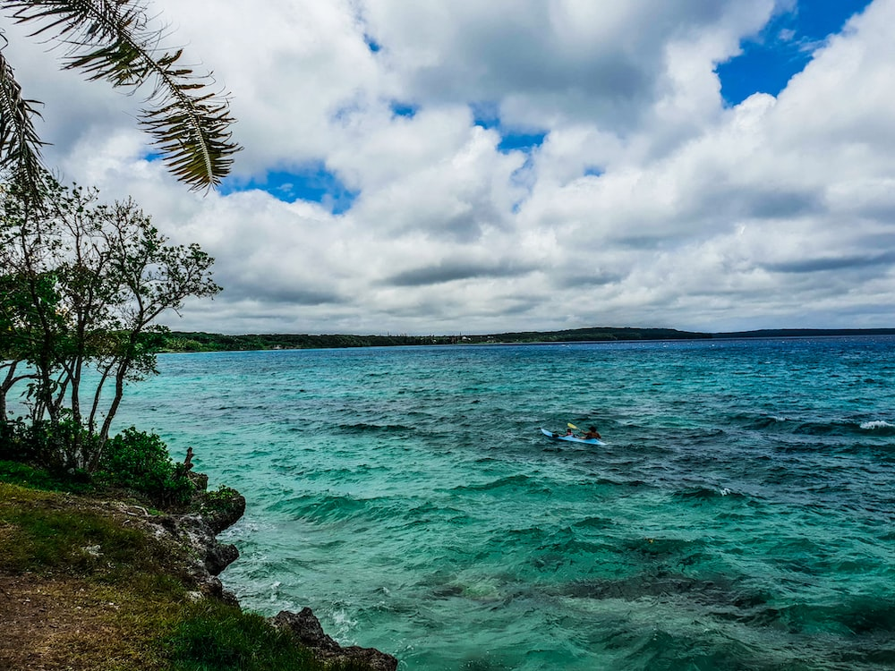 green trees beside blue sea under white clouds and blue sky during daytime