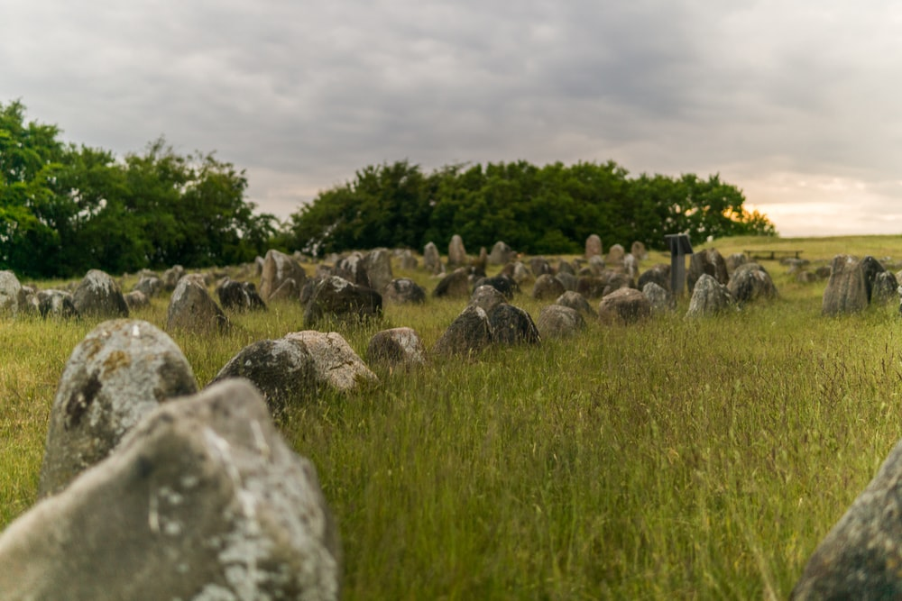 gray rocks on green grass field under gray cloudy sky during daytime