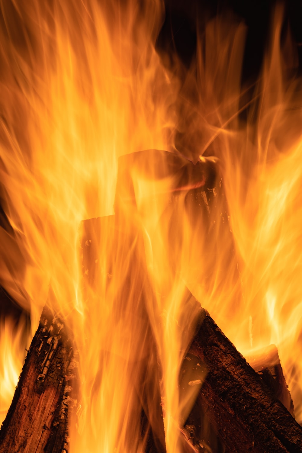 fire on brown wooden log