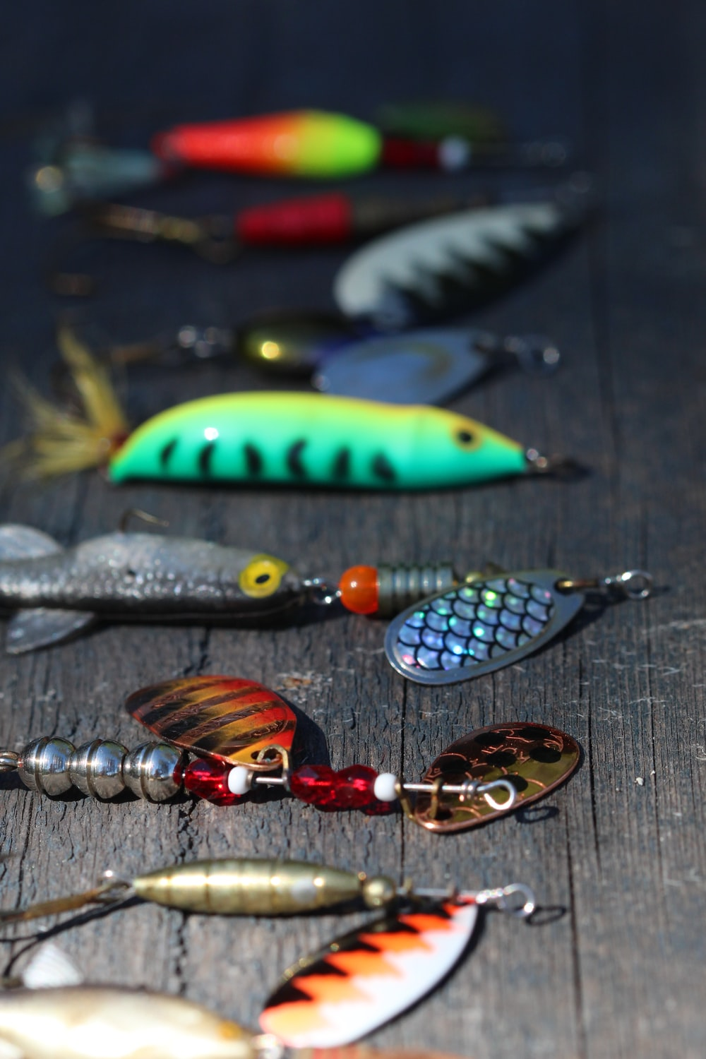blue and green fish keychain