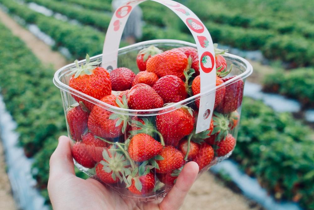 strawberries in white plastic basket