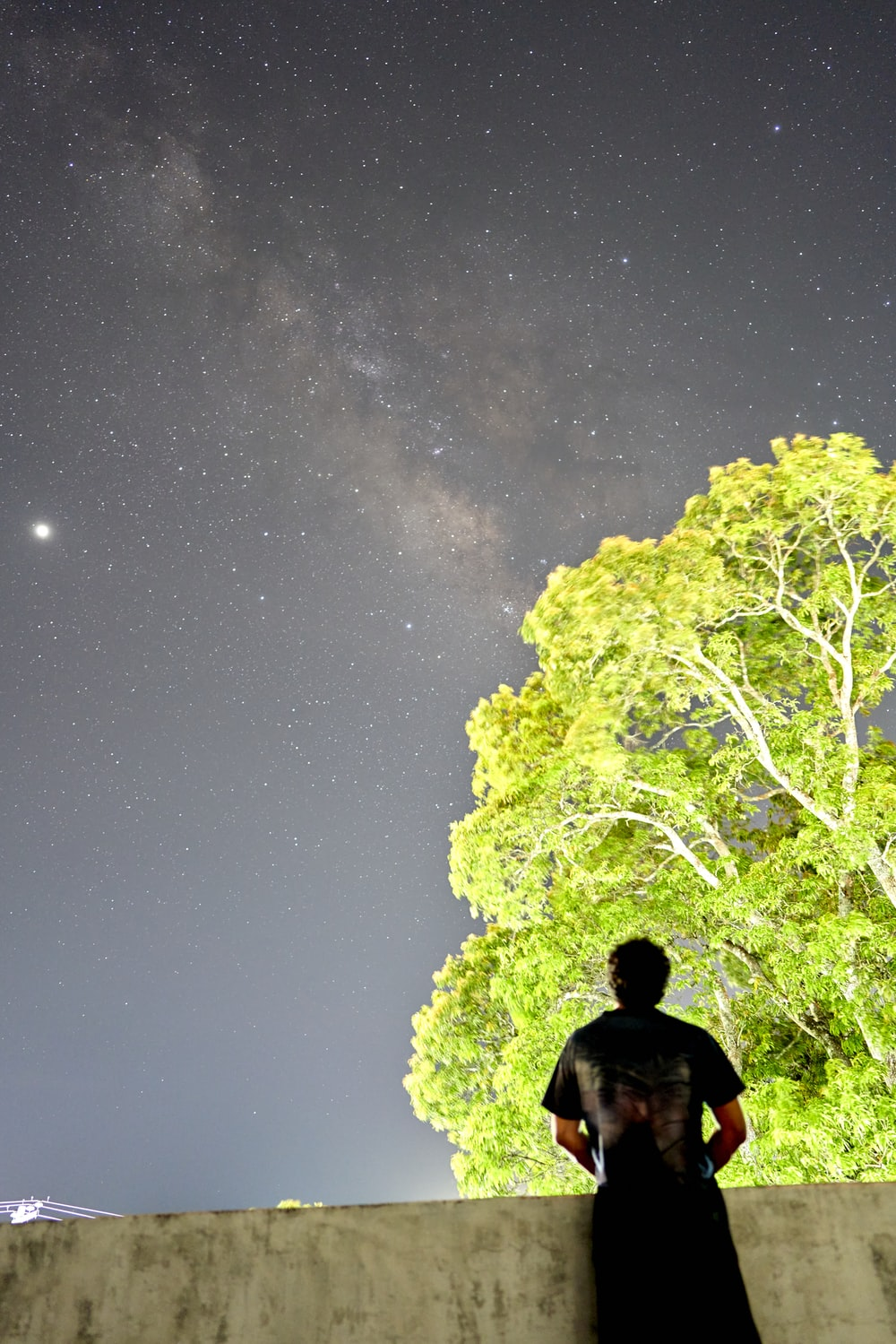 man in black jacket standing near green tree under starry night