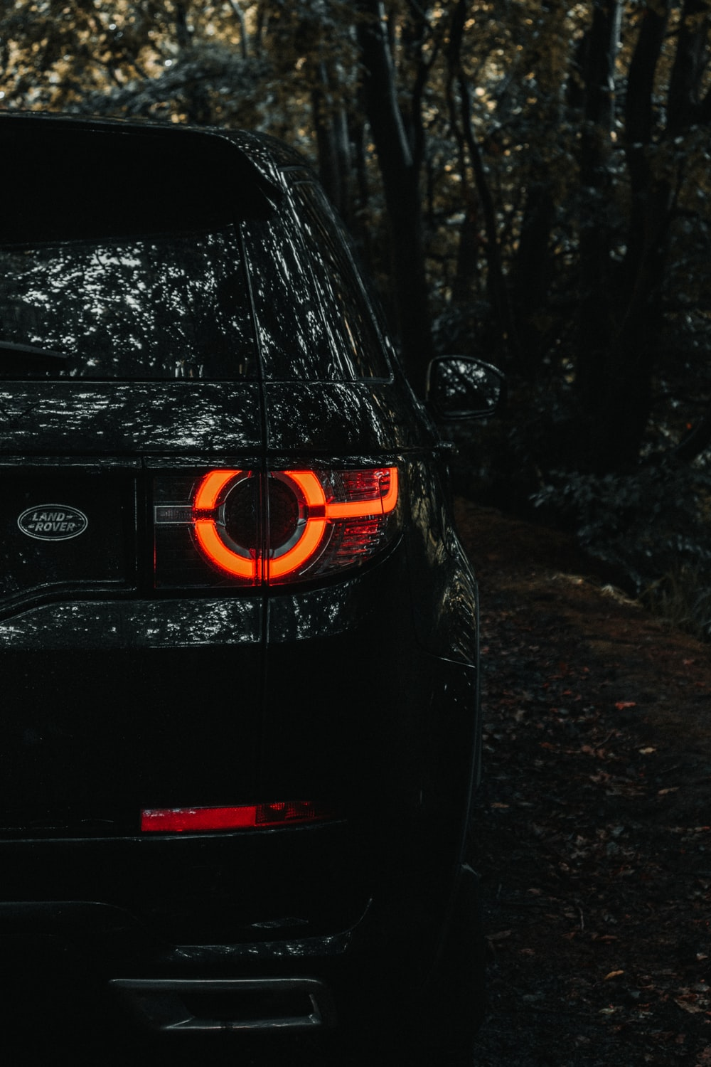 black bmw car in forest during daytime
