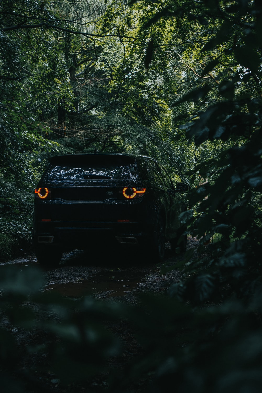 black suv in forest during daytime