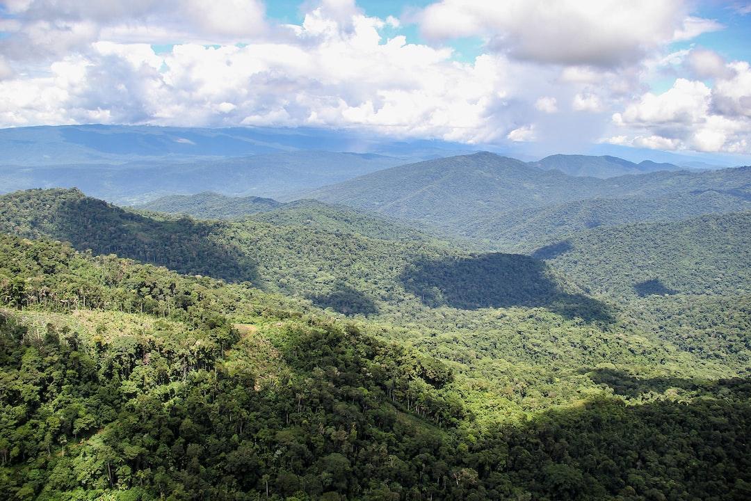 Durante un breve viaje, pude captar desde el aire la belleza de la selva peruana.