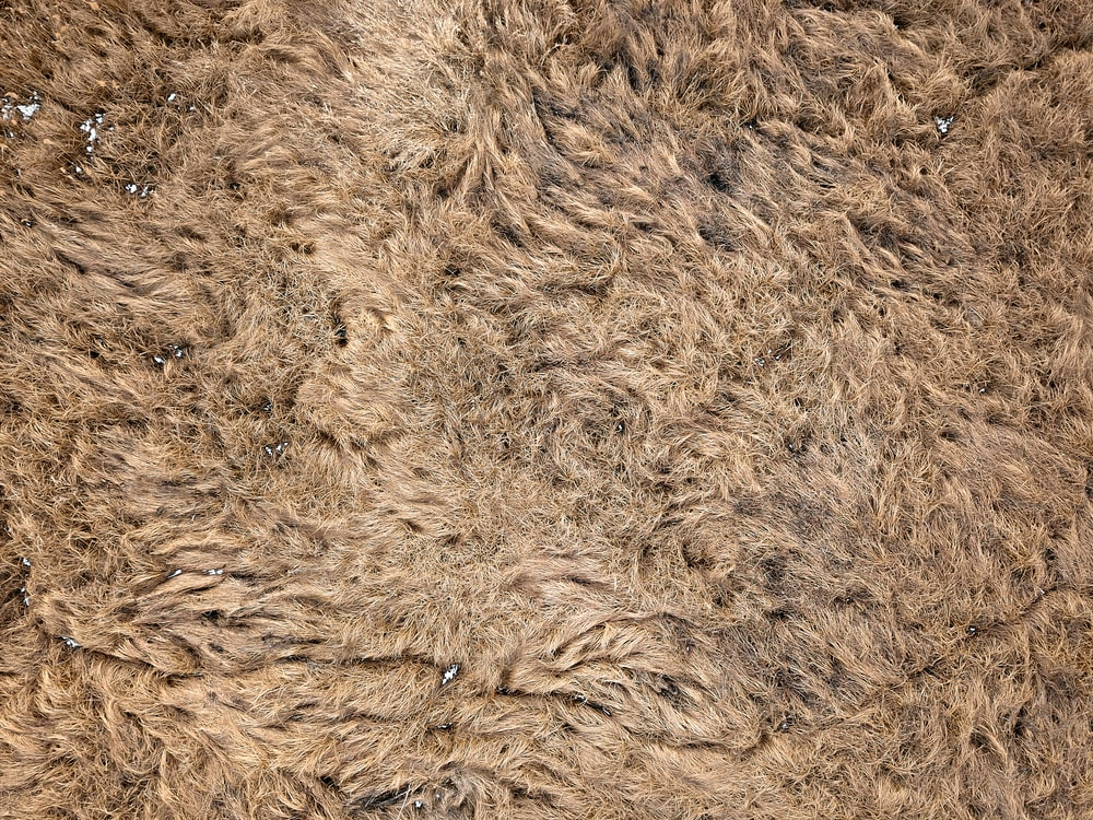 brown thick pile area rug