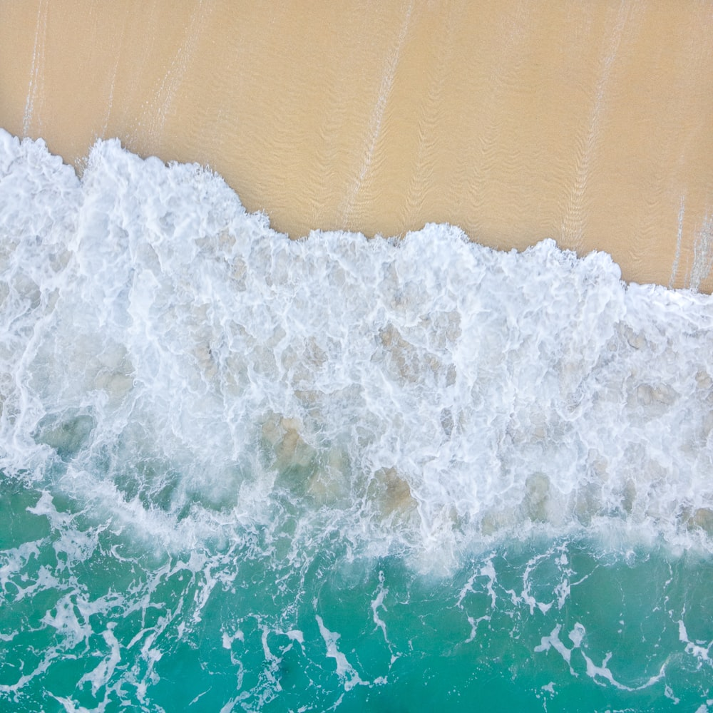 white and green sea waves