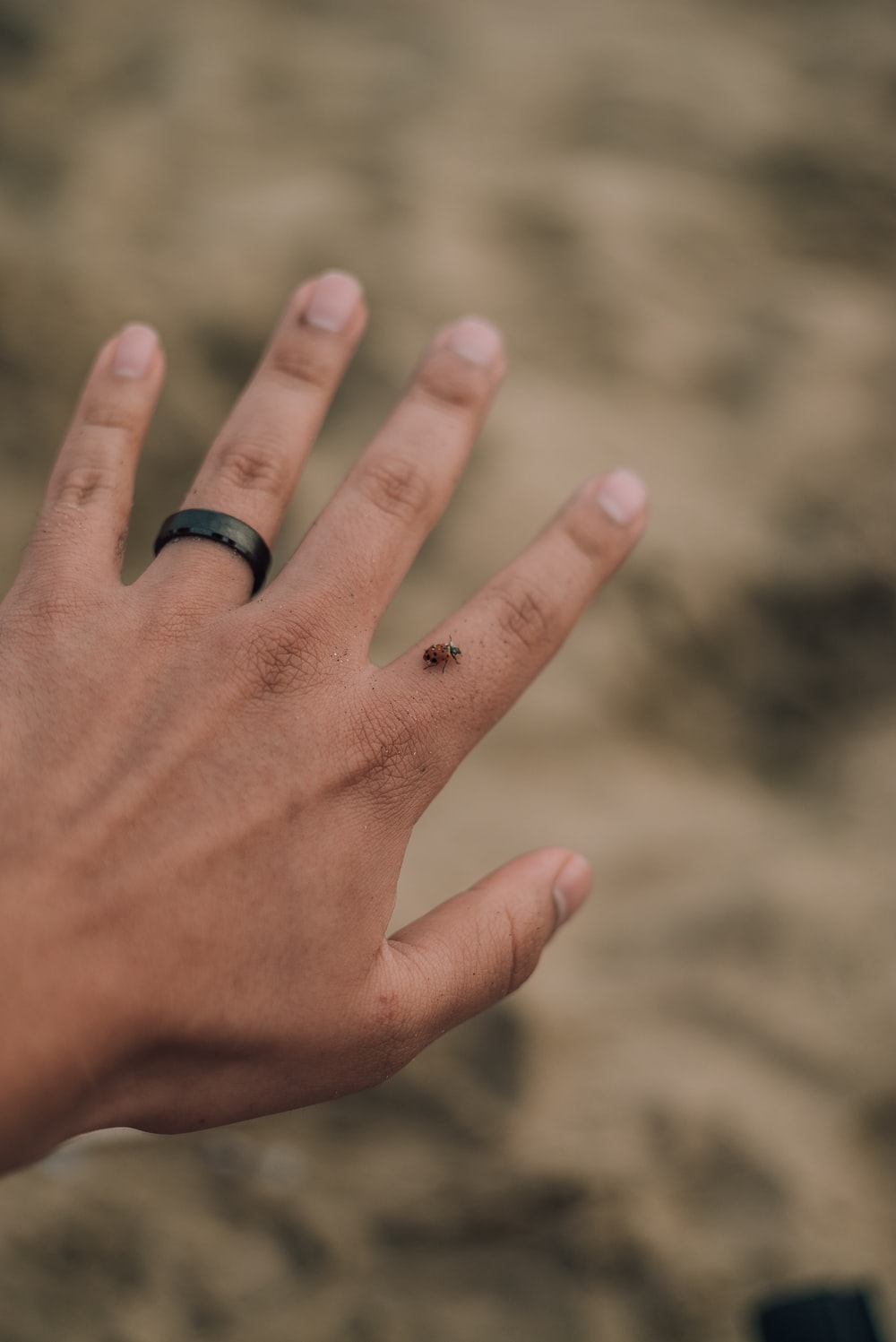 person wearing black ring on left hand