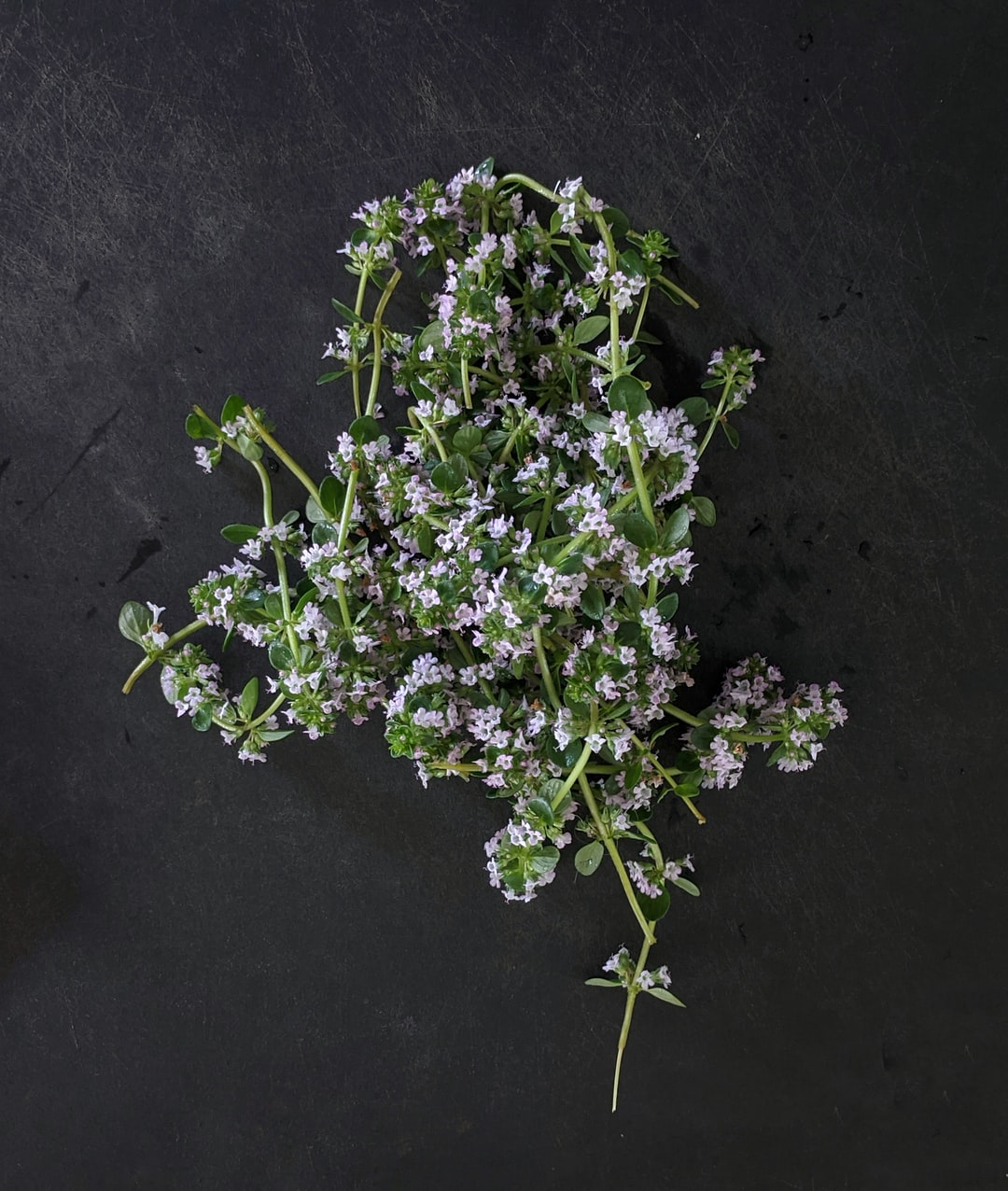 Thyme in flowers on cutting board.
