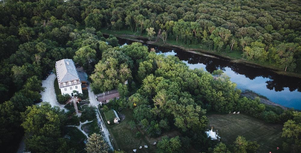 green trees near body of water during daytime sustainable procurement Winnipeg Metropolitan Region