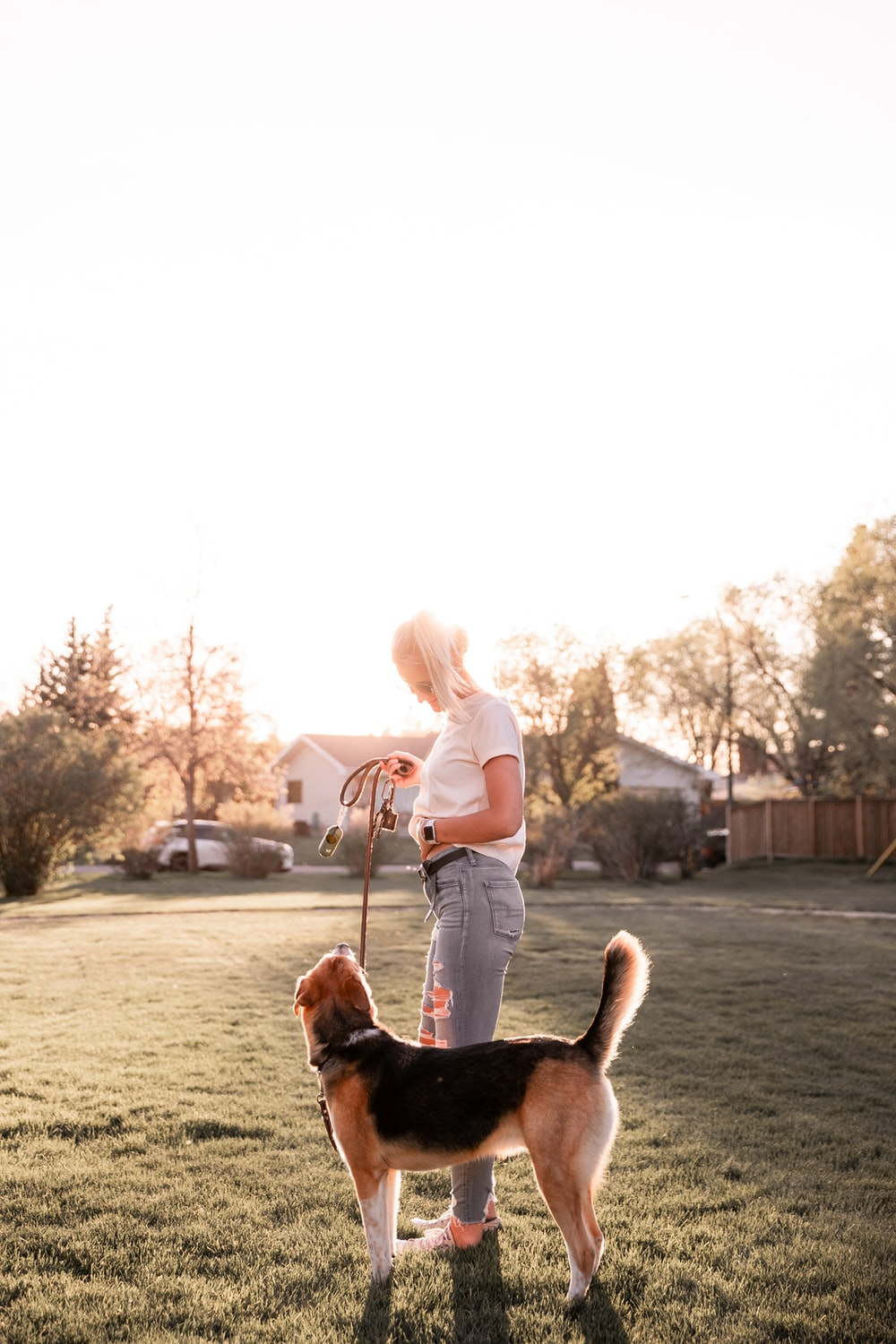 woman in white long sleeve shirt sitting beside brown and black short coated dog during daytime