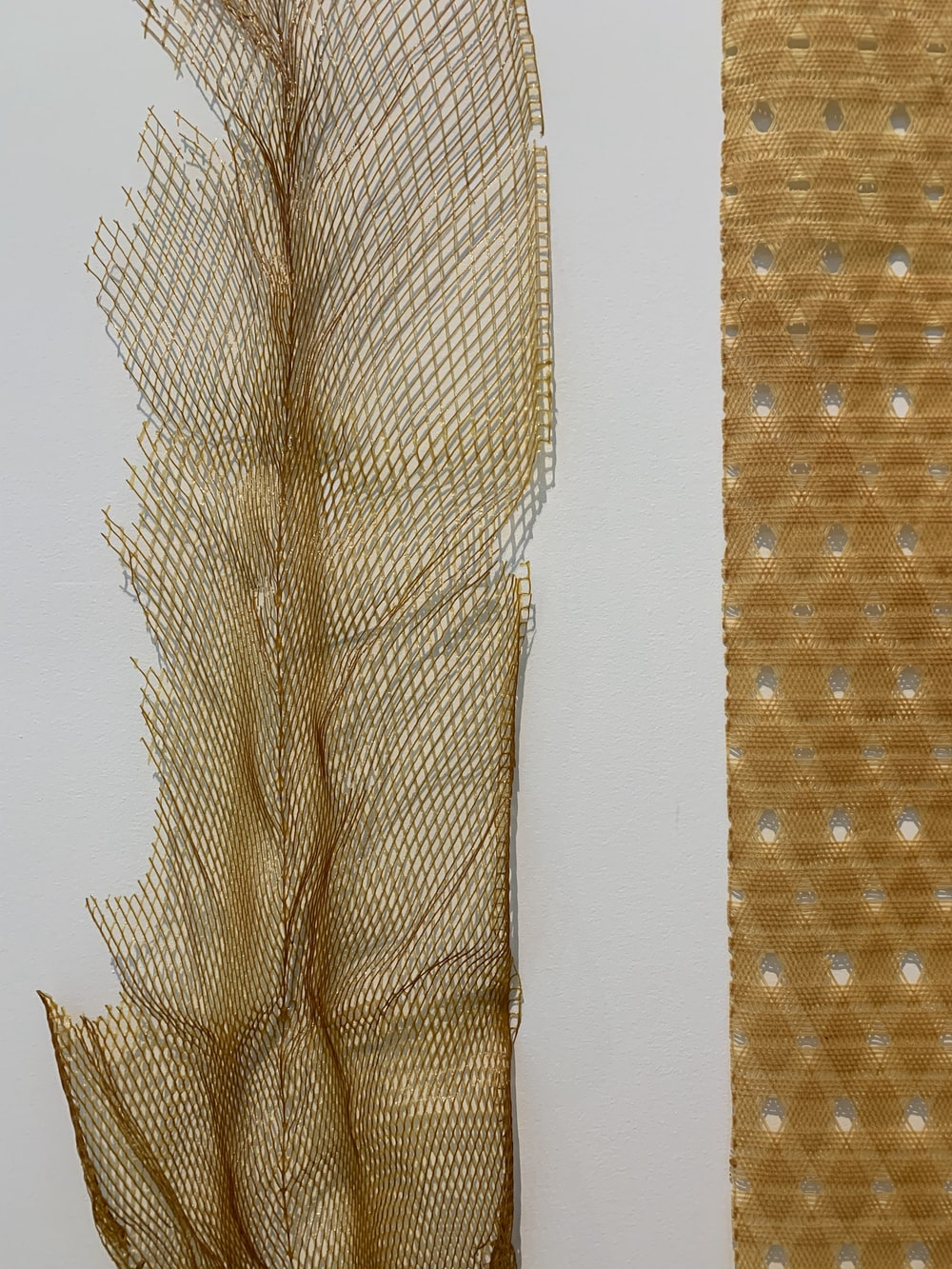 brown feather on white paper