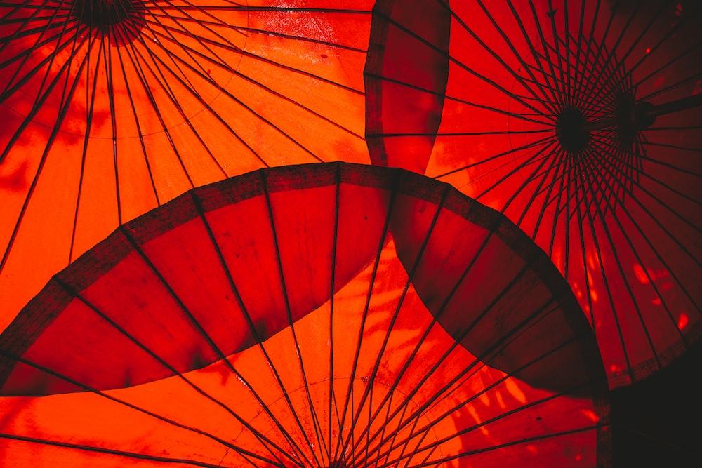 red and yellow umbrella illustration