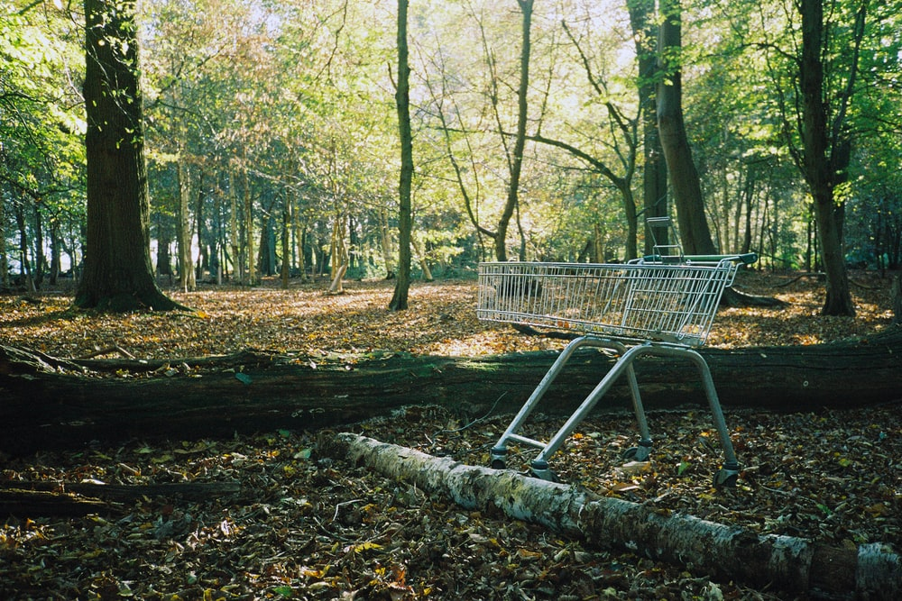 gray metal shopping cart on forest during daytime