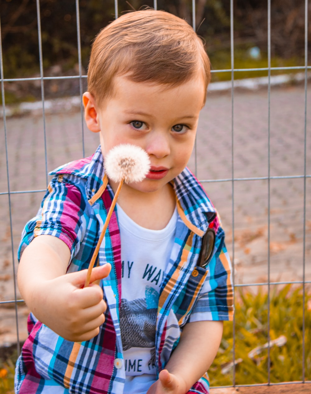 boy in blue and red stripe crew neck t-shirt holding white cotton candy during daytime