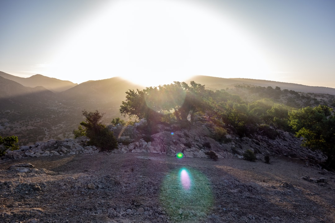 """Mystery Photography of a Mountain Plateau with Argan Trees further Mountains on the Horizon. The Photo has a strong Backlight from the Sun. The Shot seems very mystical and reminds somewhat of the movie """"The Ninth Gate"""" with Johnny Depp as Dean Corso."""