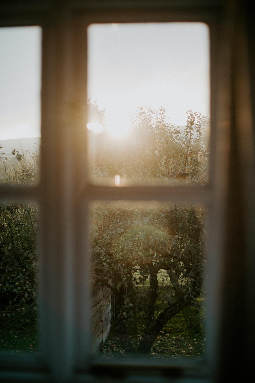 Morning Light Pictures Download Free Images On Unsplash