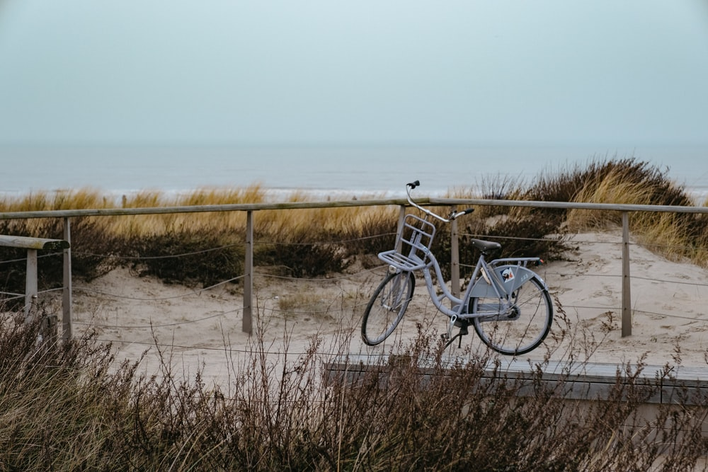 blue and white bicycle on brown sand near sea during daytime