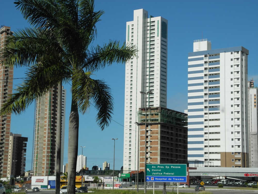white high rise buildings near green palm trees during daytime