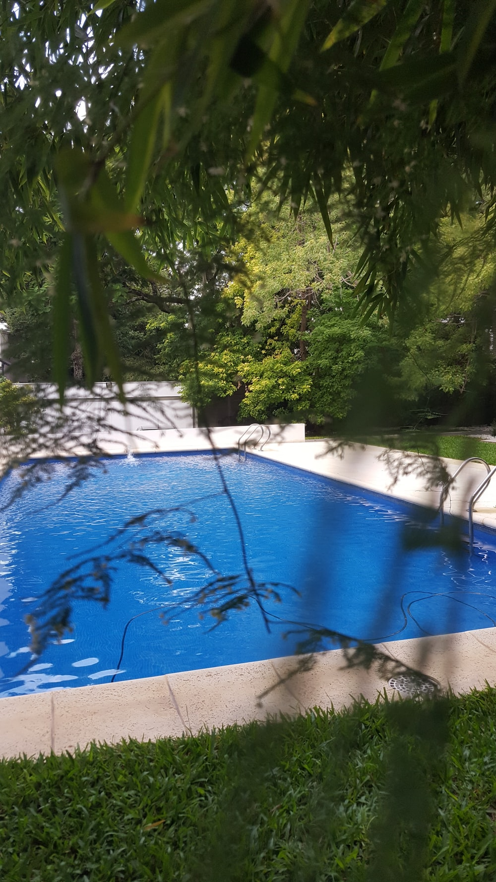 blue swimming pool surrounded by green trees during daytime
