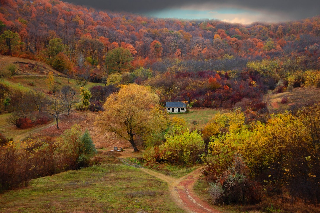 Somewhere in Moldova