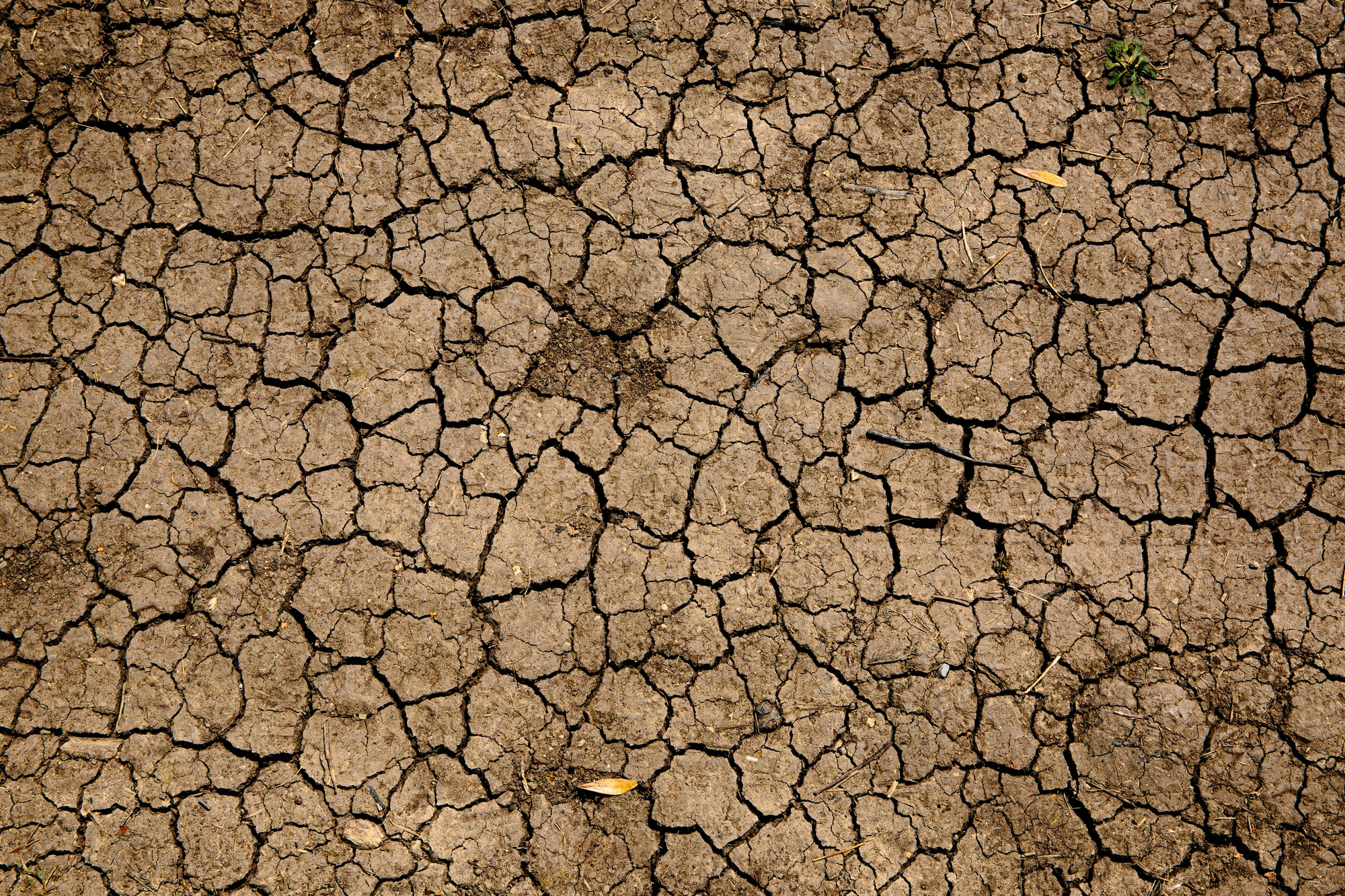 Central Asia's Failure to Avert the Impending Water Crisis