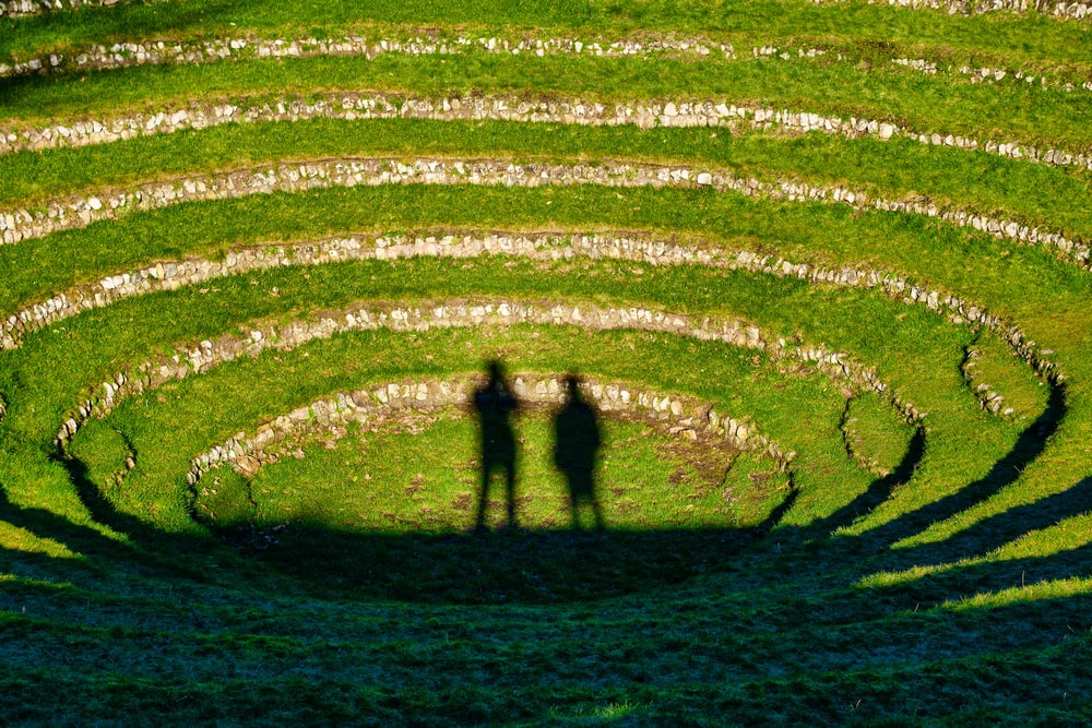 2 person walking on green grass field during daytime