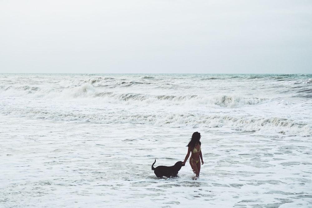 woman in black dress holding black labrador retriever on beach during daytime
