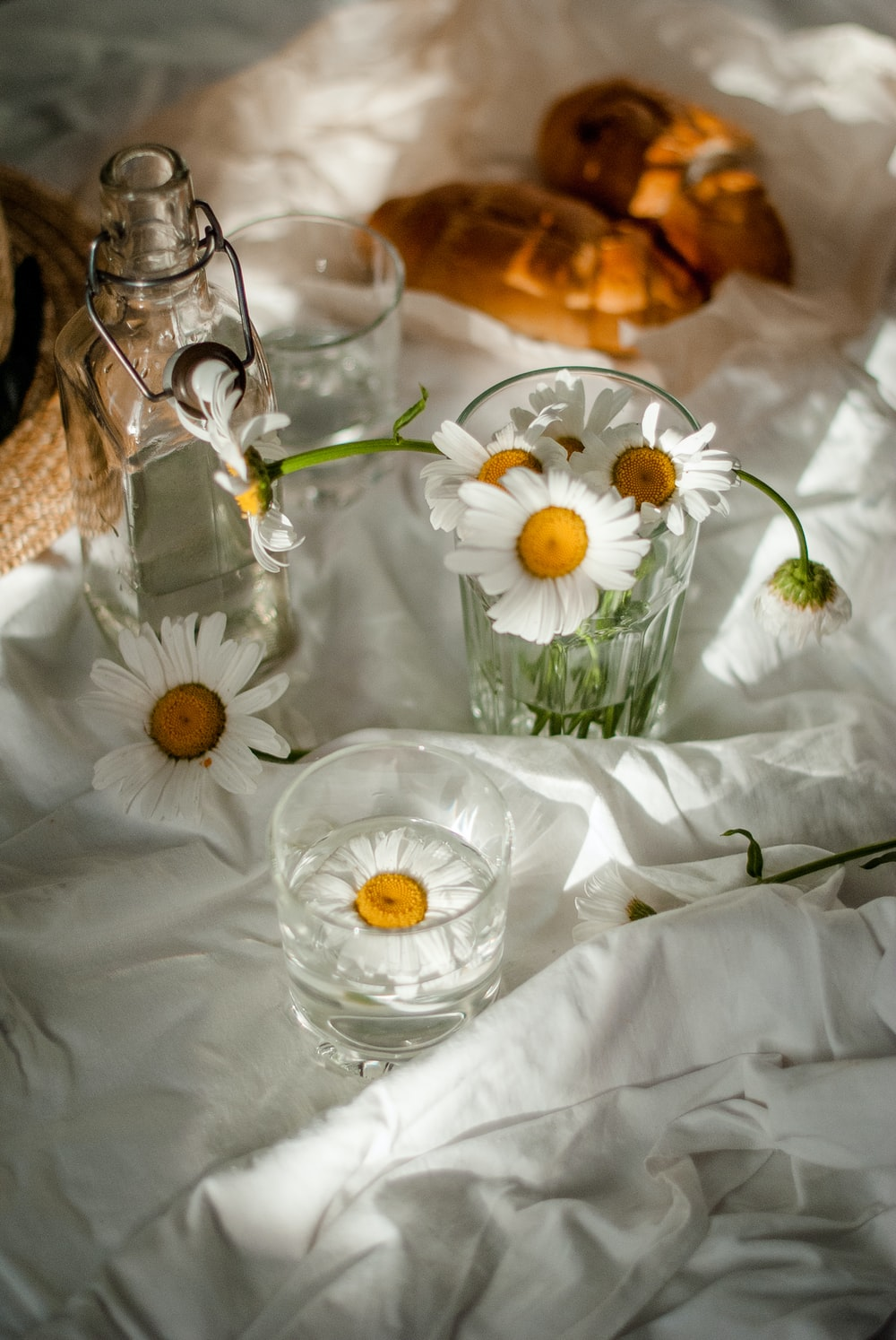 white daisy flowers in clear glass vase