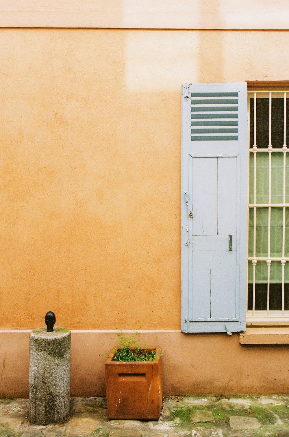 white wooden door beside green plant