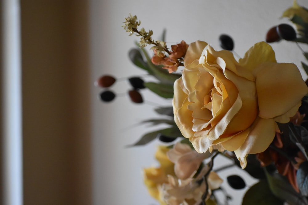 yellow rose in white ceramic vase