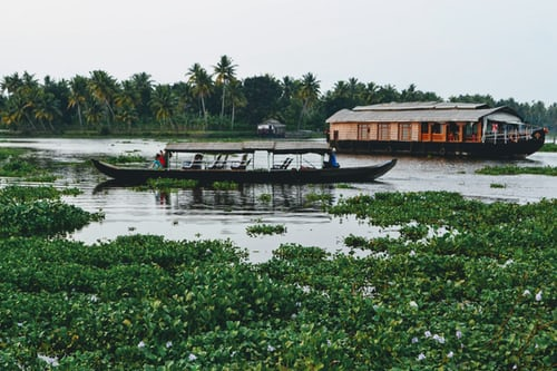 Long tail boat at the lake of Poovar
