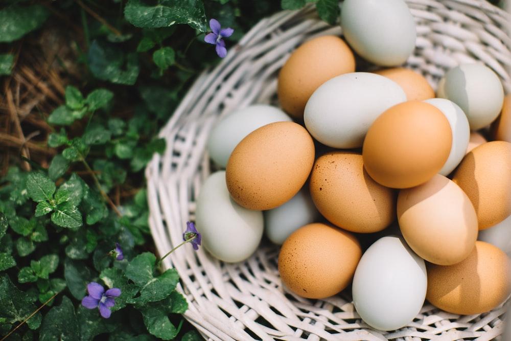 brown egg on white woven basket