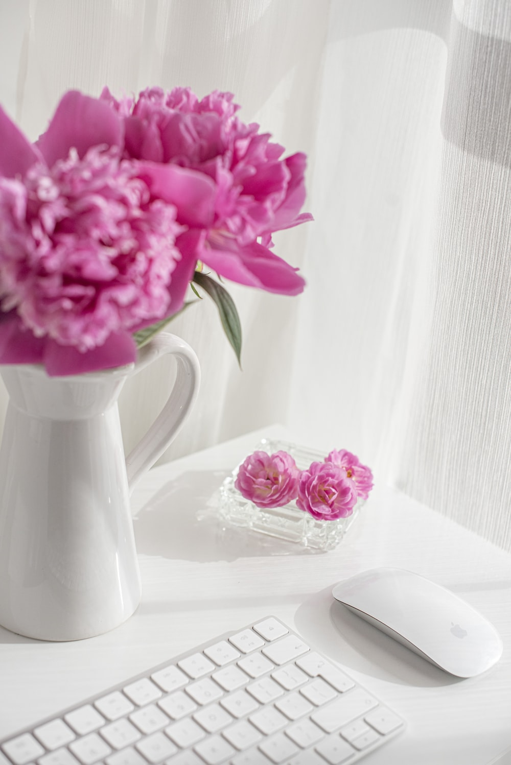 pink flowers in white ceramic vase on table