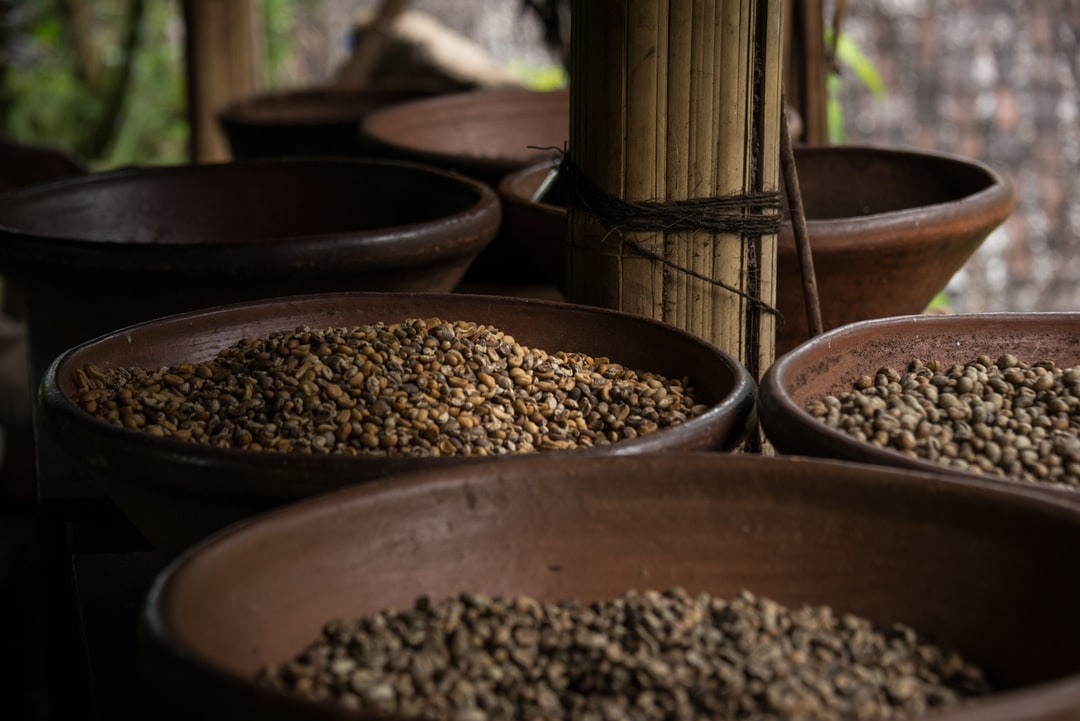 Raw coffee beans in a bowl from Bali
