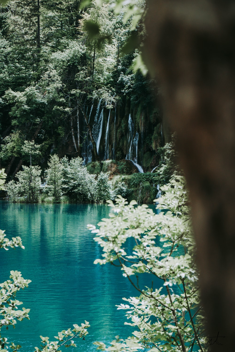 blue lake surrounded by green trees during daytime