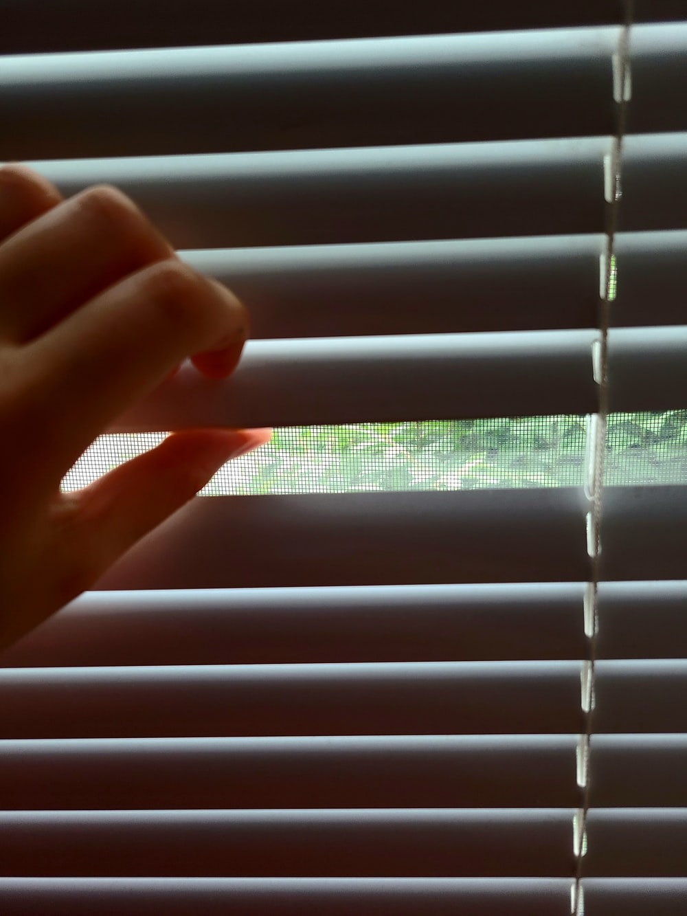 person holding white window blinds