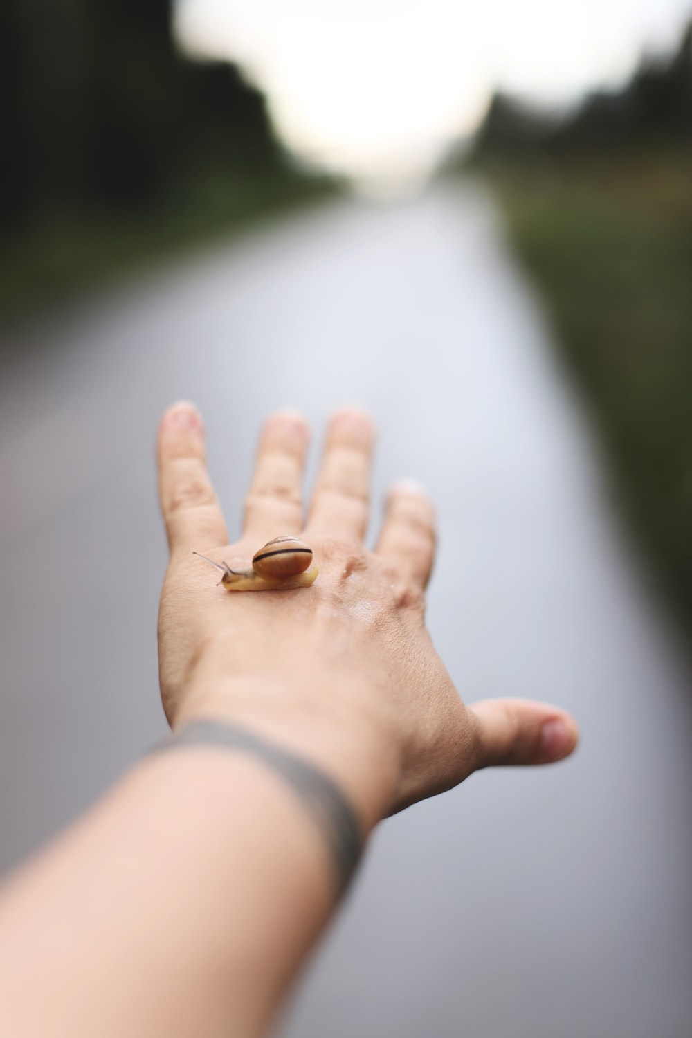 person wearing gold ring with brown stone on left hand