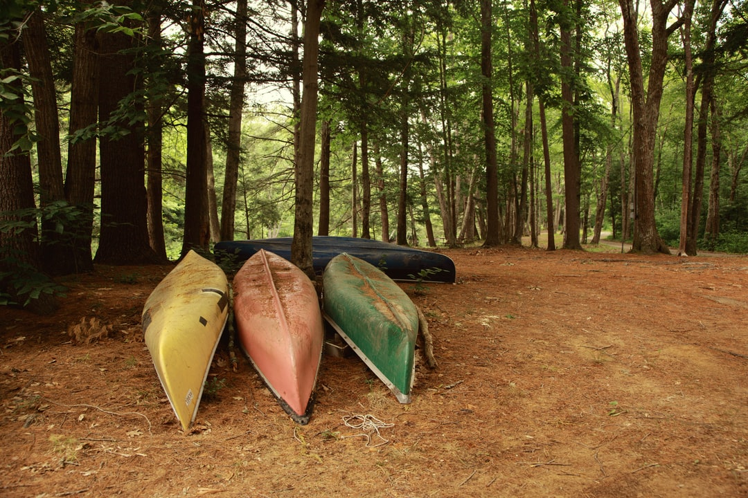 Old canoes in the woods.