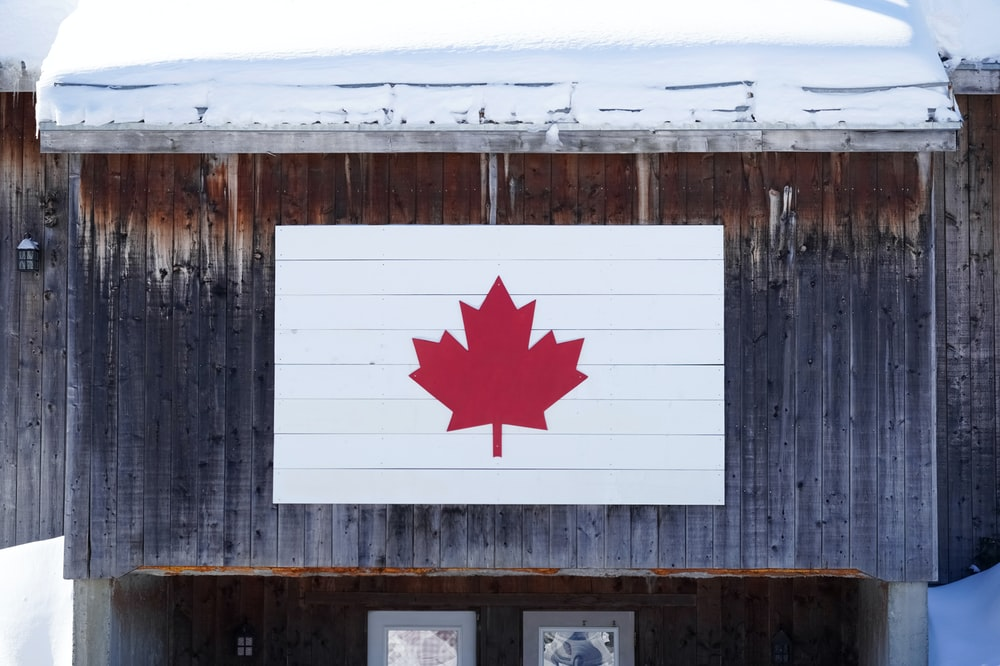 white and red star flag on brown wooden wall