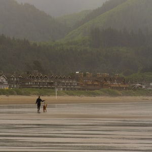 2 people walking on gray sand during daytime