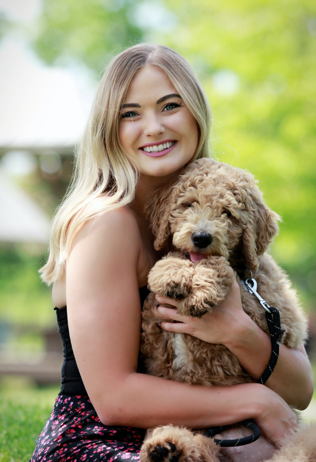 A woman cuddles her goldendoodle puppy.