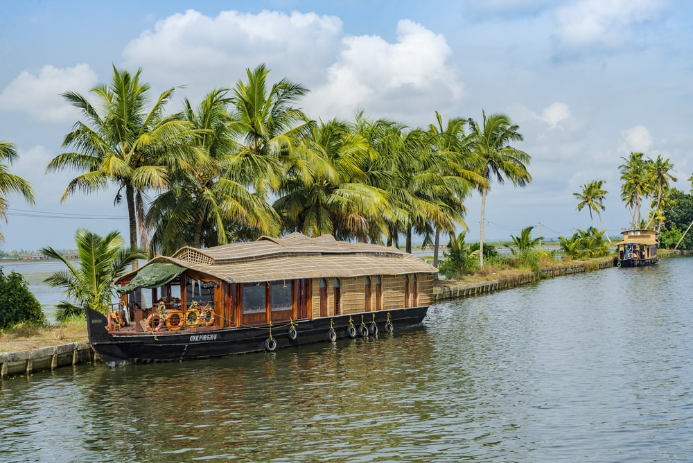 brown wooden boat on body of water near green palm trees during daytime