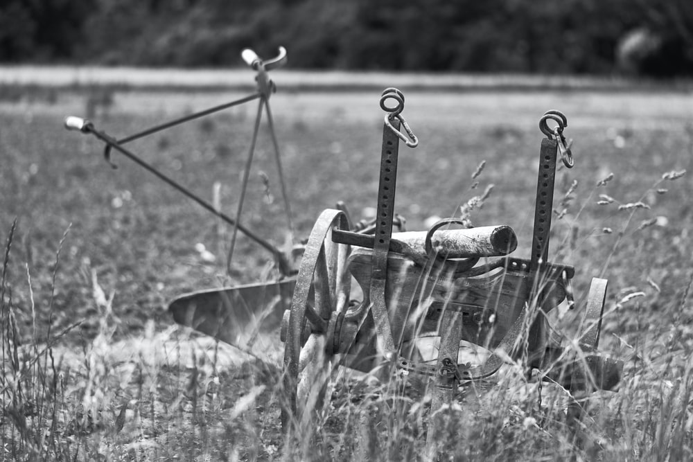 grayscale photo of a wheel barrow on grass field