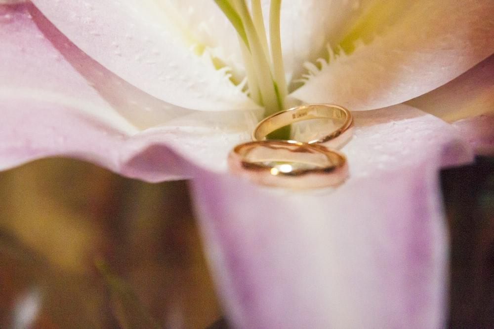 gold wedding band on white flower