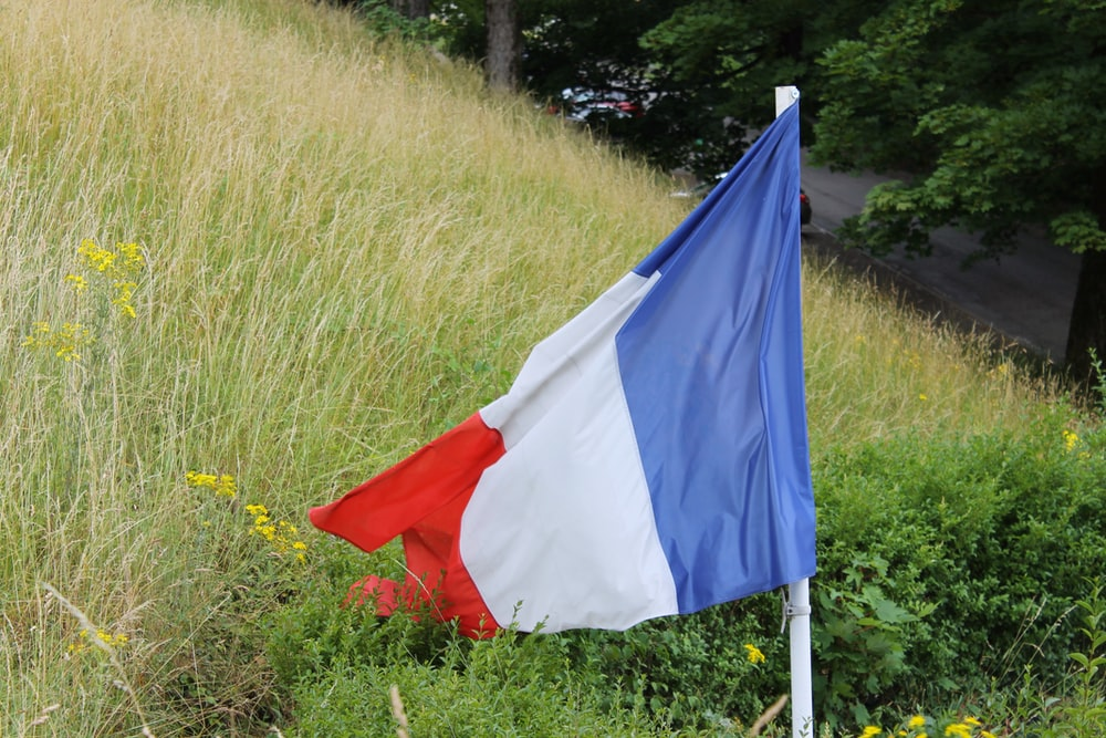 blue white and red flag on green grass field